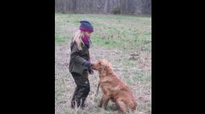Hundetraining mit Papa